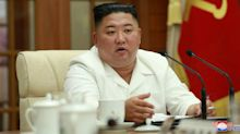Baffling photo emerges after Kim Jong-Un's rumoured coma