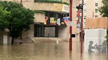 Houston's historic Alley Theatre is flooded but unbowed