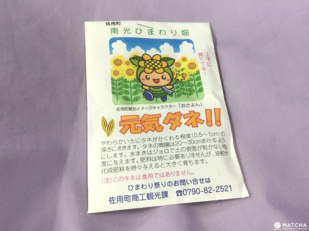34萬株向日葵綻放 兵庫縣黃橙花毯美不勝收