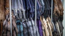 San Francisco diventa la più grande città Usa a bandire le pellicce