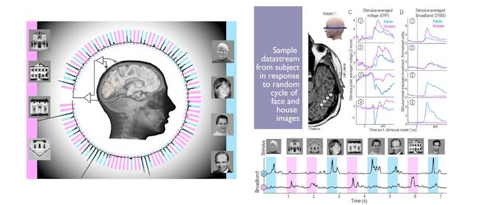 Scientists predict human thought in real time, nearly every time