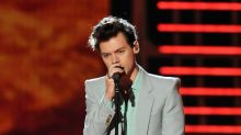 Fans disappointed after Harry Styles turns down Prince Eric role
