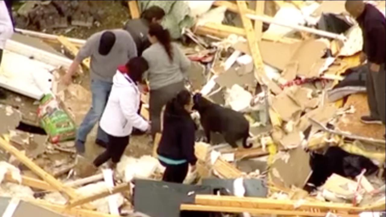 Family Dog Walks Out Of Rubble After 5 People Killed in Tornado, Deadly Floods