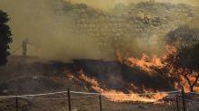 Frôlé par un incendie, le site archéologique de Mycènes en Grèce évite le pire et s'en sort sans dégâts majeurs