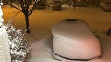 PHOTOS: Potent winter blast brings eastern Newfoundland to a standstill