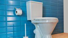 Hygienischer als der Standard: WC-Bürsten aus Silikon