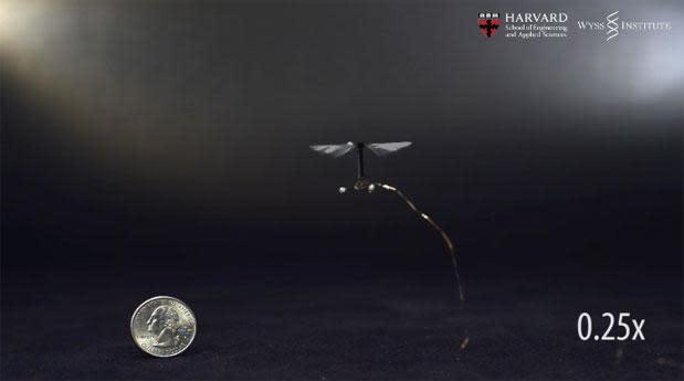 El peculiar robot-insecto de Harvard realiza su primer vuelo a control remoto