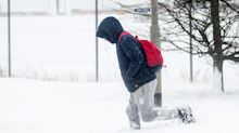 Snow storm survival guide: what to do if you're caught out by The Beast