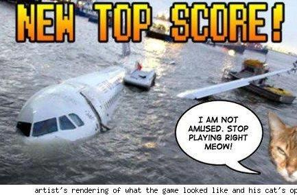 Hudson River plane crash recreated in pulled Discovery Channel game