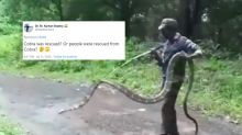 Viral Photos of 15-Feet-Long King Cobra Rescued in Tamil Nadu Leaves Twitterati Stunned