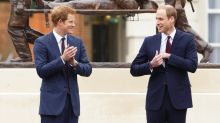 Princes Harry and William named the nation's favourite royals