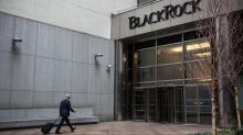 Blackrock, Fidelity employees and others sue over high fees on their own 401(k)s