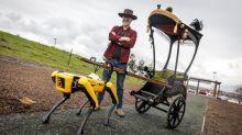 亞當·薩維奇用機器狗來拉「人力車」