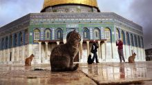 Did UNESCO Deny That the Temple Mount Had Jewish Temples?