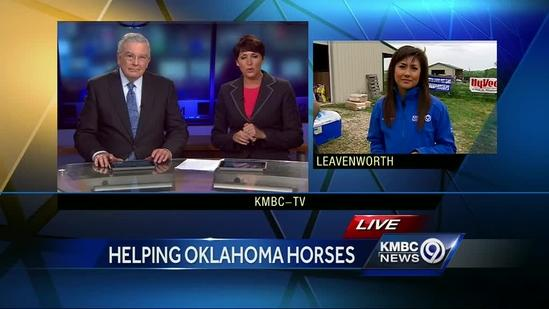 Group gathers supplies to help Oklahoma horses