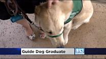 William Jessup Grad Will Help Guide The Guide Dogs