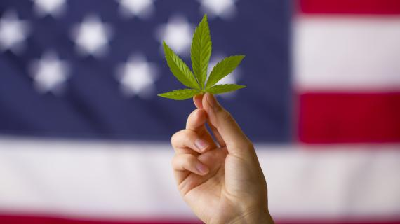 Virginia legalizing marijuana could be a catalyst for federal law