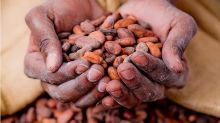 Wilmar acquires 50% stake in Aalst Chocolate