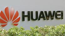 """Huawei VP: Company """"should be celebrated"""""""
