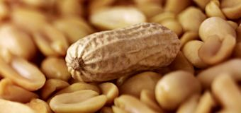 Severe food allergy cases soar in past decade