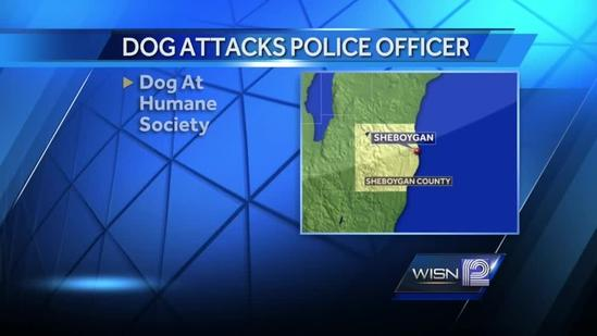A Sheboygan police officer recovers from dog bites