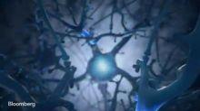 Elon Musk's Neuralink Says It's Ready for Brain Surgery