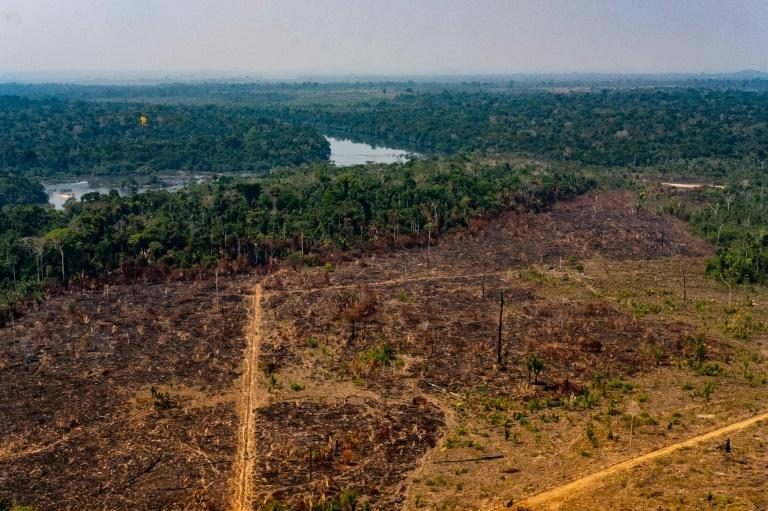 This photo from the state of Mato Grosso shows deforestation in the Amazon basin in the municipality of Colniza on August 29, 2019 (AFP Photo/Mayke TOSCANO)