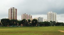 Experts believe HDB's 10-year Green Towns programme is doable