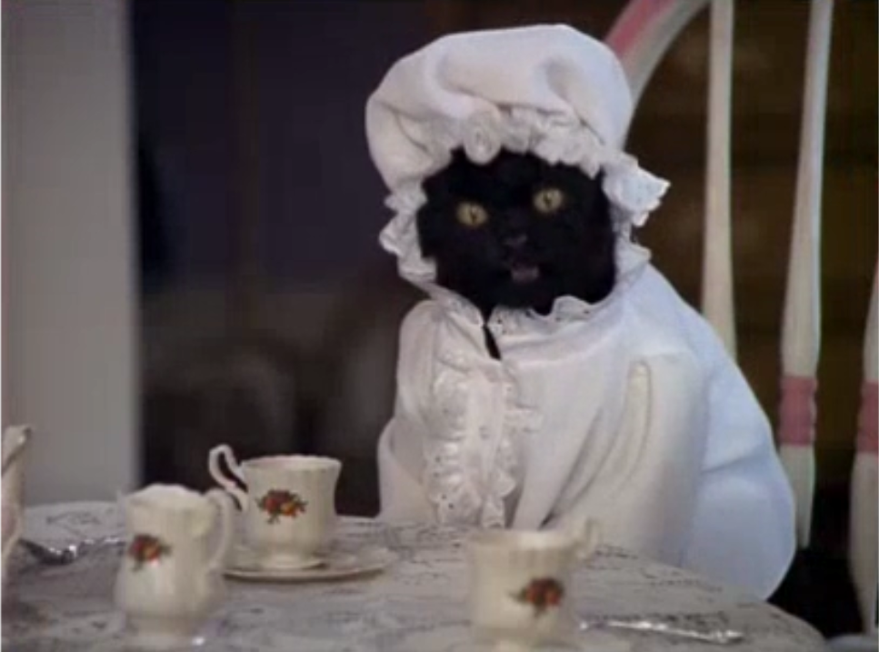 sabrina the teenage witch house layout celebrate world cat day with salem from sabrina the teenage