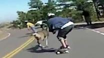 Downhill skater slams into deer