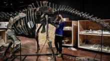 Higher oxygen levels helped dinosaurs to thrive and spread, experts find