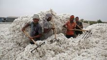 Pakistan lifts ban on cotton, sugar imports from arch-rival India as prices rise