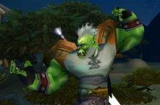 Body images in World of Warcraft