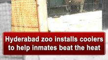 Hyderabad zoo installs coolers to help inmates beat the heat