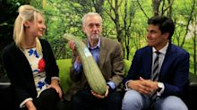 "Essential allotment kit: like Jeremy Corbyn, make sure your plot is in ""good fettle"""