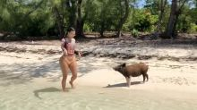 Kim Kardashian Has a Run-In with the Infamous Fyre Festival Pigs in the Bahamas: 'I Was Scared'