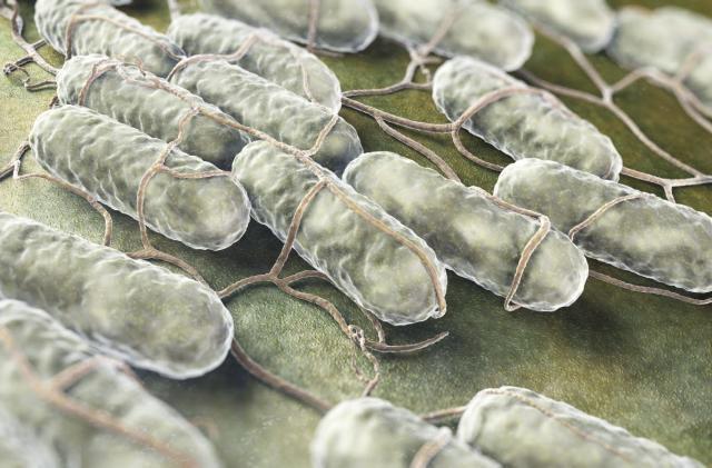 Light-triggered nanoparticles kill drug-resistant bacteria