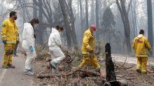 Incendies en Californie : une centaine d'habitants portés disparus