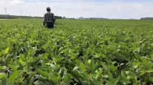 Farmer's threat prompts U.S. Agriculture Department to pull staff from crop tour