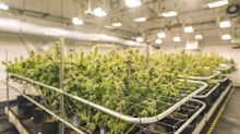 Will This Recently Announced Acquisition Make Canopy Growth Profitable at Last?