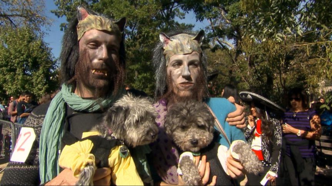 7 best costumes at annual Halloween dog parade