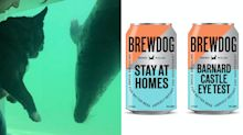 Uplifting news: BrewDog launches Barnard Castle beer and dogs visit seals