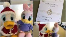 【感動】日本博物館30年失物「唐老鴨」 熱心人聖誕送Daisy相伴
