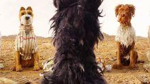"So süß: Hunde schauen sich ""Isle of Dogs"" im Kino an"