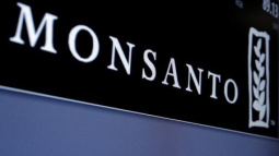 Foreign seed firms form alliance to protest India regulation