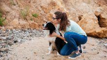 La terapia con perros que alivia la fibromialgia