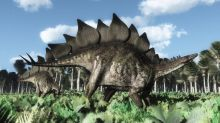 New species of stegosaur is oldest ever discovered, scientists say