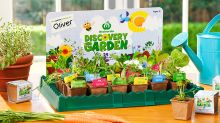 Woolies' Discovery Garden returns with 24 seedlings to collect