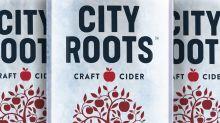Harpoon parent adds new cider brand to growing portfolio