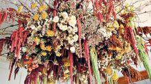 How everlasting blooms threw struggling florists a lifeline over lockdown